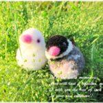 100均の材料で動物ぽんぽんを作ってみましょ♪オリジナル桜文鳥レシピ付き♪